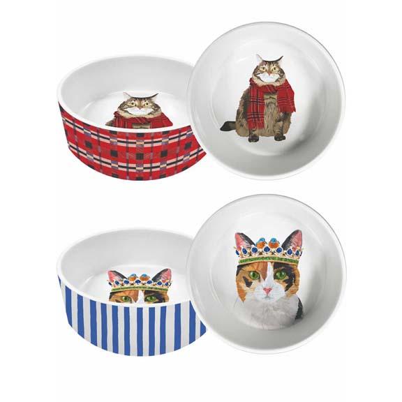 cat dish ws