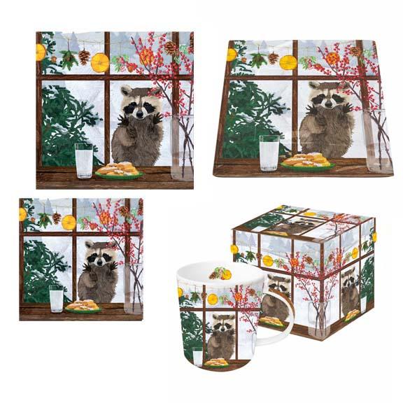 raccoon window